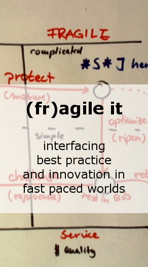 (Fr)agile IT: interfacing best practice and innovation in fast paced worlds